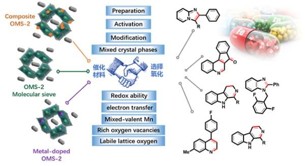 图1.OMS-2型催化材料在清洁合成含氮杂化分子中的催化应用