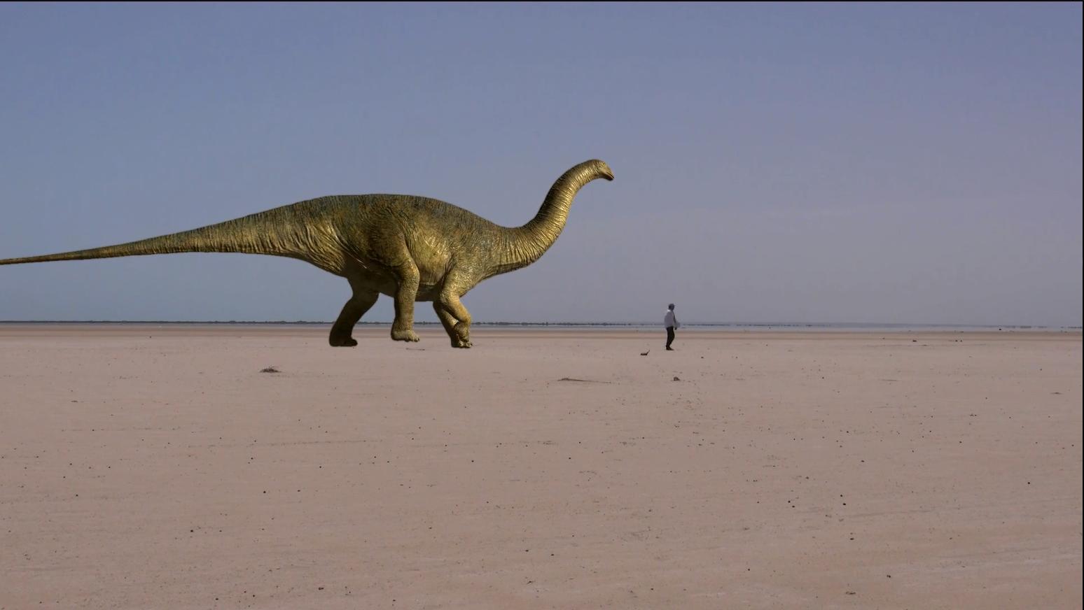 恐龙在沙滩行走高清实拍视频素材
