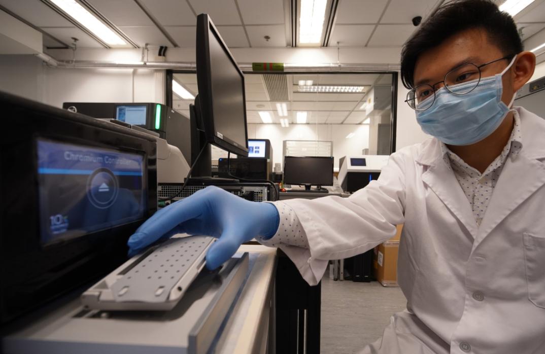香港科大发现阿尔茨海默病治疗新靶标