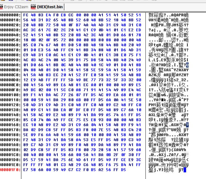 shellcode raw
